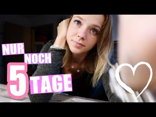 Folge 3 | Nur noch 5 Tage bis zum Umzug von Anne Wünsche